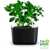 Vaso Autoirrigável Retangular Para Plantas e Temperos