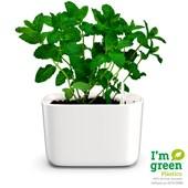 Produto Vaso Autoirrigável Retangular Para Plantas e Temperos